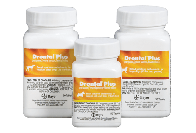 Drontal® Plus (praziquantel, pyrantel pamoate, febantel) Tablets for Dogs pill bottles in 3 sizes.