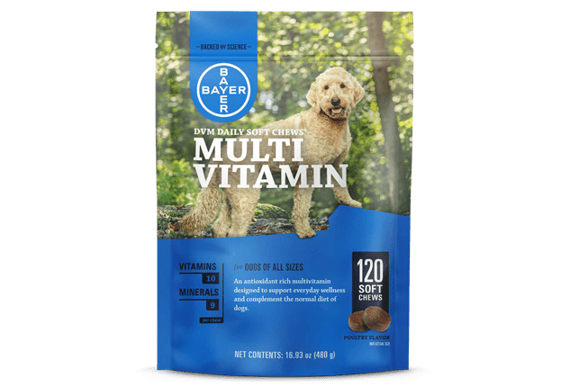 Packaging of DVM Daily Soft Chews®, a highly palatable, antioxidant-enriched multivitamin for dogs.