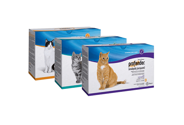 3 packages of Profender® (emodepside + praziquantel) Topical Solution for cats.
