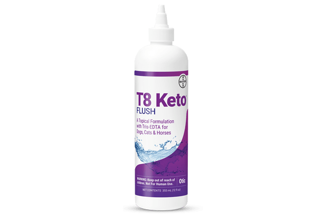 Bottle of T8 Keto® Flush (Tris-EDTA + ketoconazole).